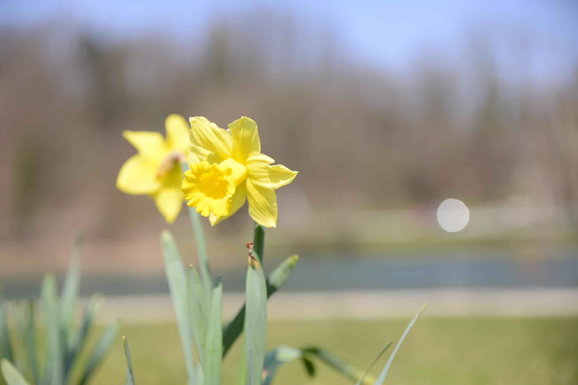pomladni izlet_023